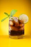 Bebida de la menta imagen de archivo