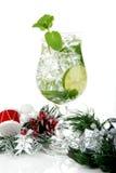 Bebida de la Navidad de Mojito Imagen de archivo