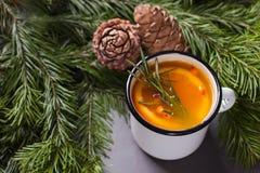 Bebida de la Navidad o de la acción de gracias Cóctel del otoño y del invierno Foto de archivo libre de regalías