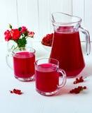 Bebida de la pasa roja Imagen de archivo libre de regalías