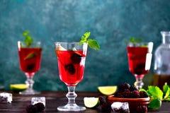 Bebida de la zarza, vista delantera foto de archivo libre de regalías
