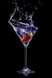 Bebida de Martini Imagen de archivo libre de regalías