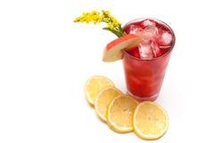 Bebida de refrescamento Imagem de Stock