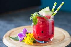 Bebida de refrescamento da melancia do verão com hortelã e palha bebendo Imagem de Stock