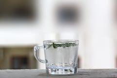 Bebida de refrescamento do limão e da hortelã 22 de julho de 2017 Imagens de Stock