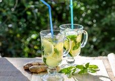Bebida de restauración con el limón y el jengibre Foto de archivo