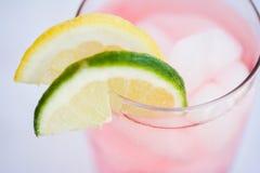 Bebida de restauración del verano Fotografía de archivo libre de regalías