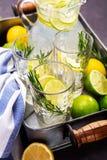 Bebida de restauración del verano Imagen de archivo libre de regalías