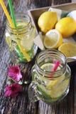 Bebida de restauración fresca: hielo, limón y menta imagen de archivo