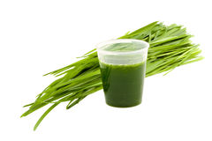 Bebida de Wheatgrass isolada no fundo branco fotografia de stock royalty free