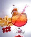 A bebida decorou o açúcar fotografia de stock royalty free
