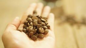 Bebida del café del grano de café para la cafetería foto de archivo libre de regalías