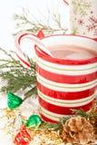 Bebida del chocolate caliente de la Navidad Imagen de archivo