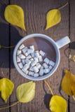 Bebida del chocolate con las melcochas en parque del otoño con las hojas amarillas cerca imagenes de archivo