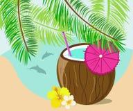 Bebida del coco Fotografía de archivo