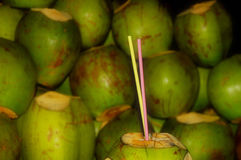 Bebida del coco Foto de archivo