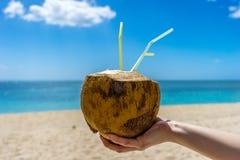 Bebida del coco, cóctel Foto de archivo