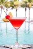 Bebida del coctel Fotografía de archivo