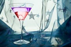 Bebida del coctel de Martini Imágenes de archivo libres de regalías