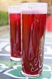 Bebida del español de Tipical Imagen de archivo