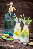 Bebida del limón con la hoja y agrios de la menta Fotografía de archivo