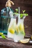 Bebida del limón con la hoja y agrios de la menta Imagenes de archivo