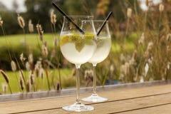 Bebida del verano del hielo de la soda del elderflower del prosecco de Hugo Foto de archivo