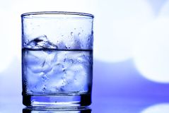 Bebida do álcool fotos de stock royalty free