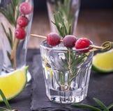 Bebida do arando para o Natal Imagens de Stock Royalty Free
