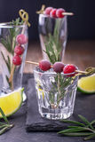 Bebida do arando para o Natal Fotografia de Stock Royalty Free