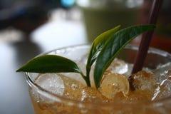 Bebida do chá de gelo Foto de Stock