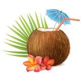 Bebida do coco Fotografia de Stock