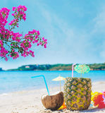 Bebida do coco e do abacaxi sob flores cor-de-rosa Imagens de Stock Royalty Free