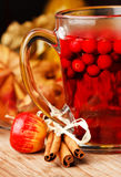 Bebida do inverno Imagens de Stock