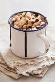 Bebida do inverno da canela dos marshmallows do chocolate quente dos costumes do ` de S mini fotografia de stock
