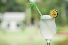 Bebida do limão Fotografia de Stock Royalty Free