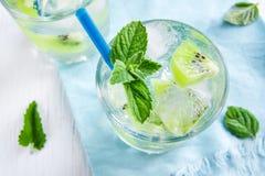Bebida do quivi (cocktail) Imagem de Stock Royalty Free