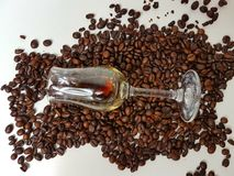 Bebida dos brownbeans do whitebackground dos coffeebeans do coffeelique do licor Imagem de Stock Royalty Free