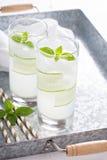 Bebida efervescente do pepino da manjericão em vidros altos Imagens de Stock