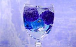 Bebida en el hielo foto de archivo