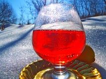 Bebida en la nieve Foto de archivo libre de regalías