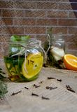 Bebida erval outonal Fotografia de Stock Royalty Free