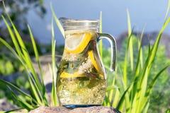 Bebida excelente da natureza Foto de Stock Royalty Free
