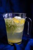 Bebida fermentada das flores da baga de sabugueiro foto de stock royalty free