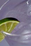Bebida fría con la cal 2 Fotografía de archivo libre de regalías