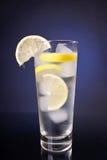 Bebida fresca Foto de Stock Royalty Free