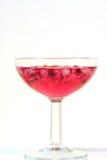 bebida fresca del verano del cóctel del prosecco de la granada Imagen de archivo