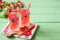 Bebida fresca del viburnum en vidrio en fondo de madera verde con las hojas y las bayas Fotos de archivo
