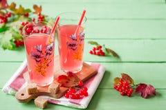 Bebida fresca del viburnum en vidrio en fondo de madera verde con las hojas y las bayas Imagenes de archivo