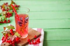 Bebida fresca del viburnum en vidrio en fondo de madera verde con las hojas y las bayas fotos de archivo libres de regalías